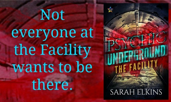 Sarah Elkins - The Facility Graphic