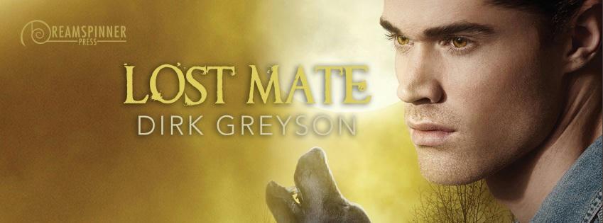 Dirk Greyson - Lost Mate Banner