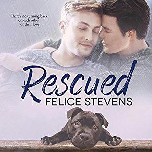Felice Stevens - Rescued Cover Audio