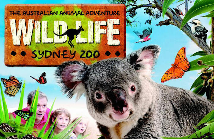 Sydney 5 Attraction Pass Can Save Parents $200 on Top Family Attractions