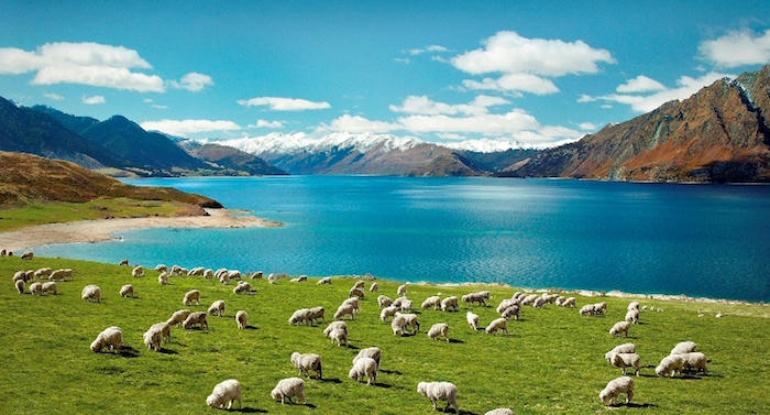 Top Destinations to Travel to with a Falling Australian Dollar