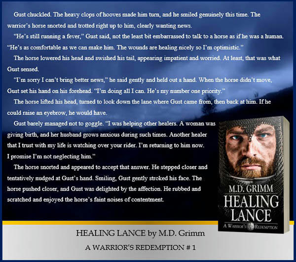 M.D. Grimm - Healing Lance Promo 4