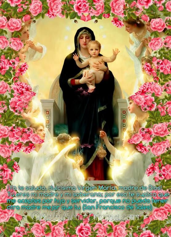 Virgen Madre con angeles entre flores rosas (bannersec)