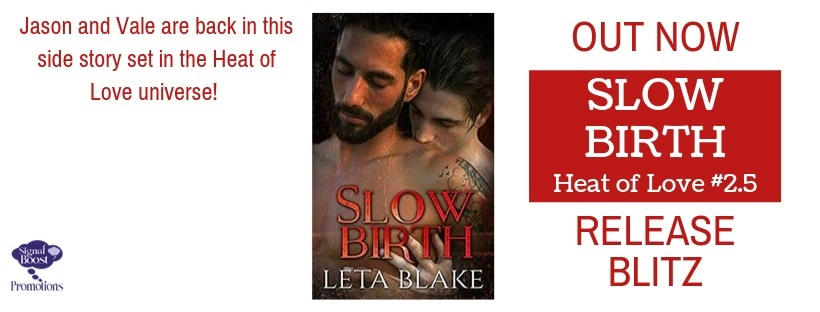 Leta Blake - Slow Birth RBBANNER-101