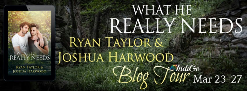 Ryan Taylor & Joshua Harwood - What He Really Needs Tour Banner