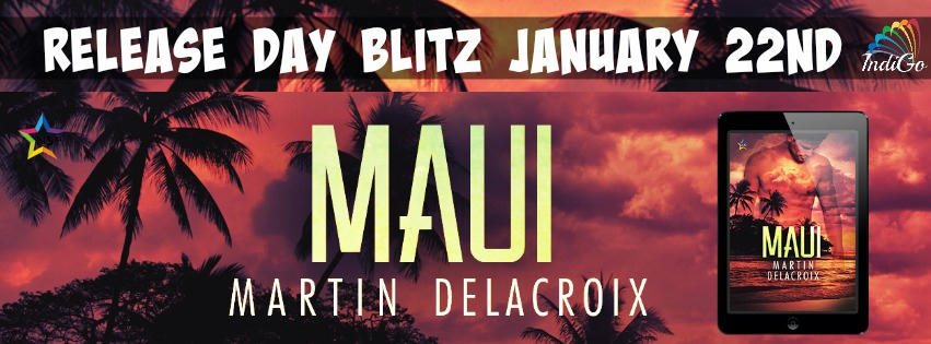 Martin Delacroix - Maui Banner
