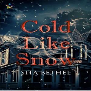 Sita Bethel - Cold Like Snow Square