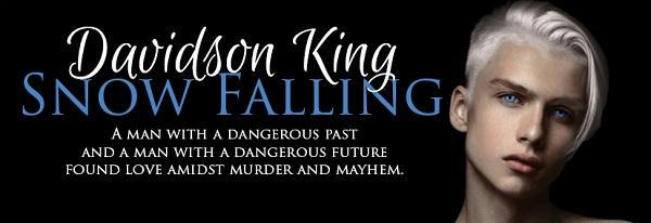 Davidson King - Snow Falling Banner
