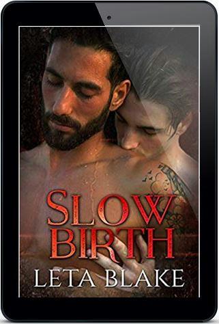 Leta Blake - Slow Birth 3d Cover nek438