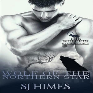 S.J. Himes - Wolf of the Northern Star Square