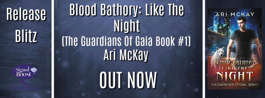 Ari McKay - Like The Night RBBAnner 1