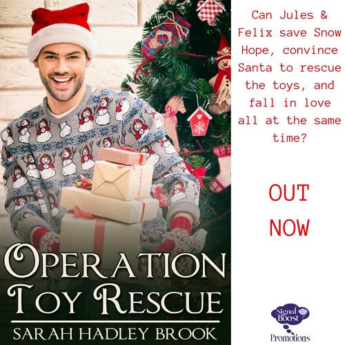 Sarah Hadley Brook - Operation Toy Rescue INSTAPROMO-20