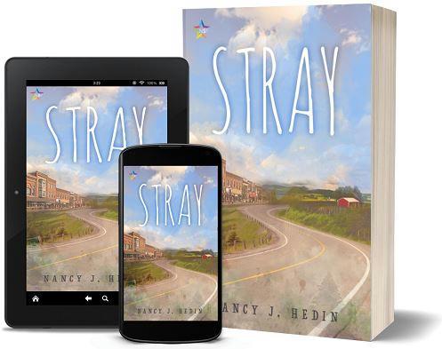 Nancy J. Hedin - Stray 3d Promo