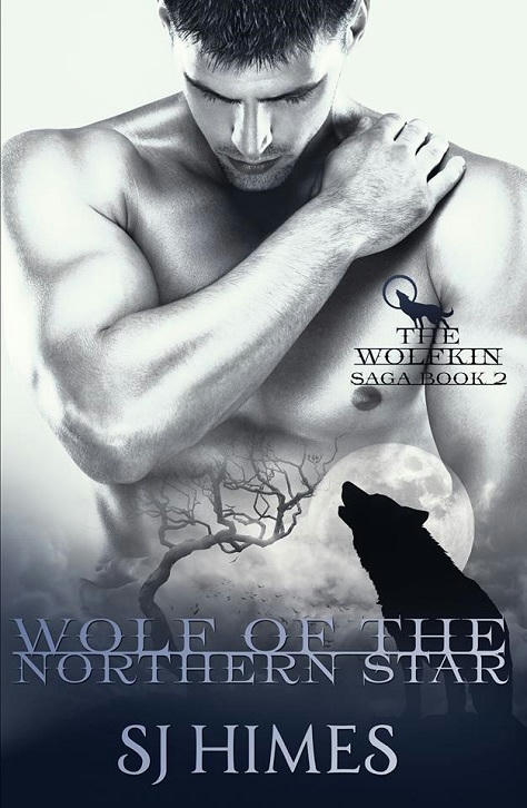 S.J. Himes - Wolf of the Northern Star Cover