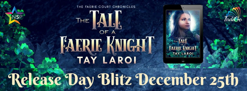 Tay LaRoi - The Tale of a Faerie Knight Banner