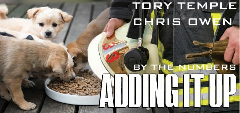 Tory Temple & Chris Owen - Adding it Up Banner