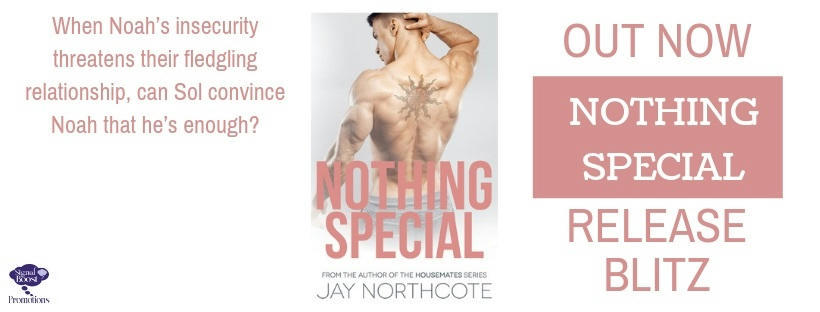 Jay Northcote - Nothing Special RBBanner-44
