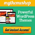 Premium WordPress Themes Made For You