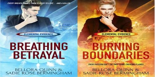 Bellora Quinn and Sadie Rose Bermingham - Elemental Evidence Banner
