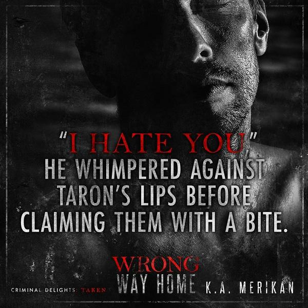 K.A. Merikan - Wrong Way Home Teaser-Square-1