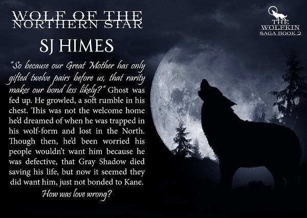 S.J. Himes - Wolf of the Northern Star teaser 1