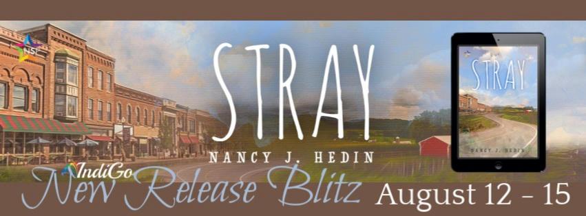 Nancy J. Hedin - Stray Banner