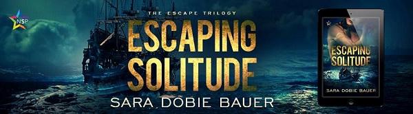 Sara Dobie Bauer - Escaping Solitude NineStar Banner