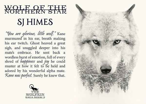 S.J. Himes - Wolf of the Northern Star teaser 2