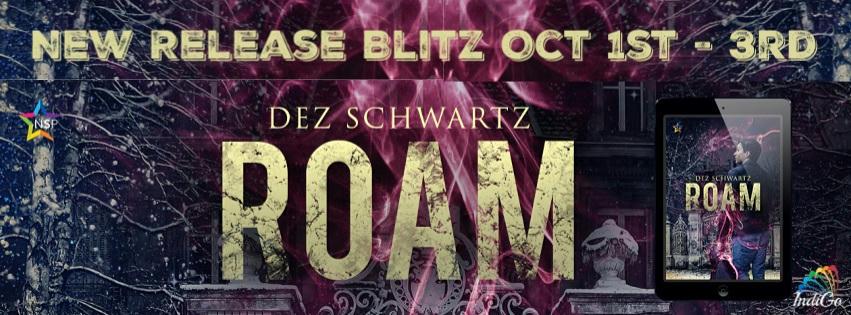 Dez Schwartz - Roam RB Banner
