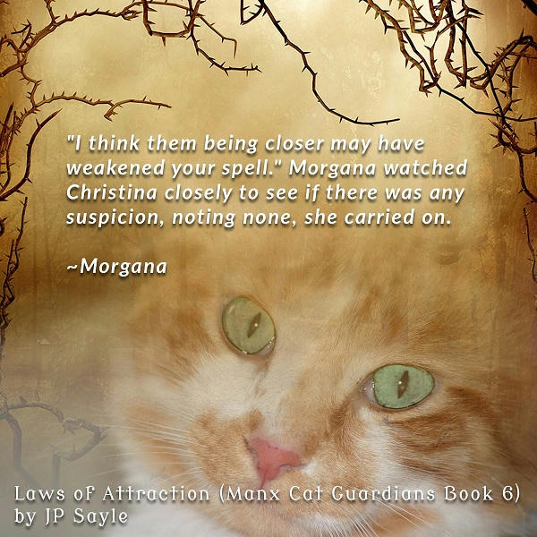 J.P. Sayle - Laws of Attraction Teaser - Morgana