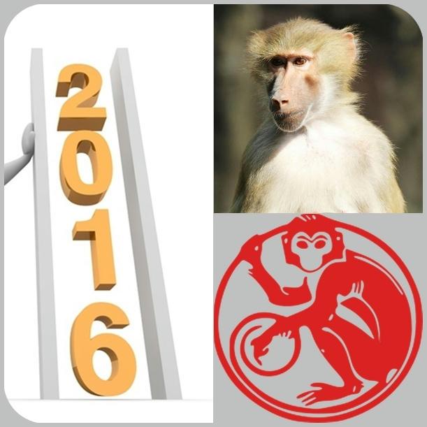 El año 2016 es el año del Mono de Fuego en el horóscopo chino