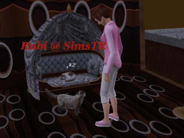 The Sims 2 Pets Teach Command Play Dead