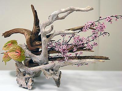 Ikebana El Arte Japonés Del Arreglo Floral Asiastage