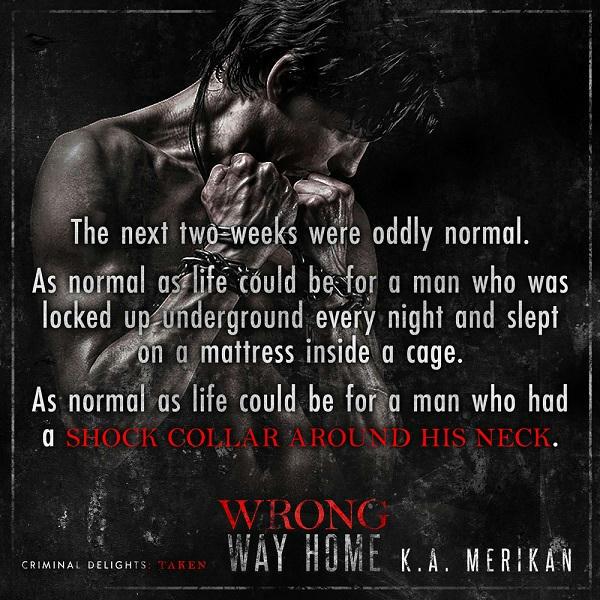 K.A. Merikan - Wrong Way Home Teaser-Square-2