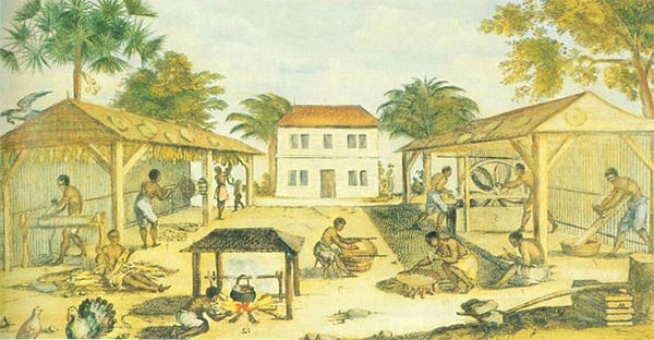 An image of slaves processing tobacco