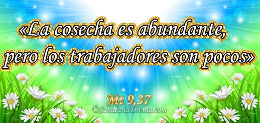 versos biblia