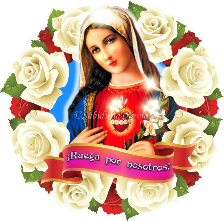 Corazon de la Virgen Maria