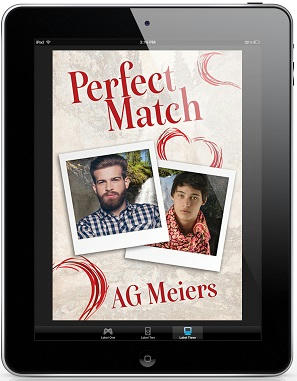 A.G. Meiers - Perfect Match 3d Cover