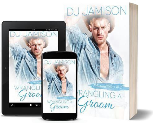 D.J. Jamison - Wrangling the Groom 3d Promo