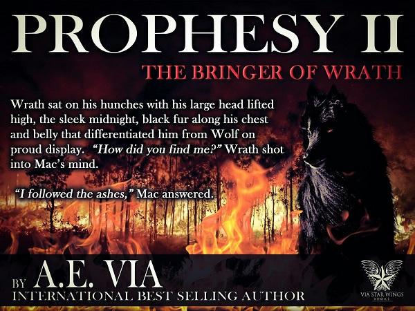A.E. Via - Prophesy Book #2 The Bringer of Wrath Promo 3