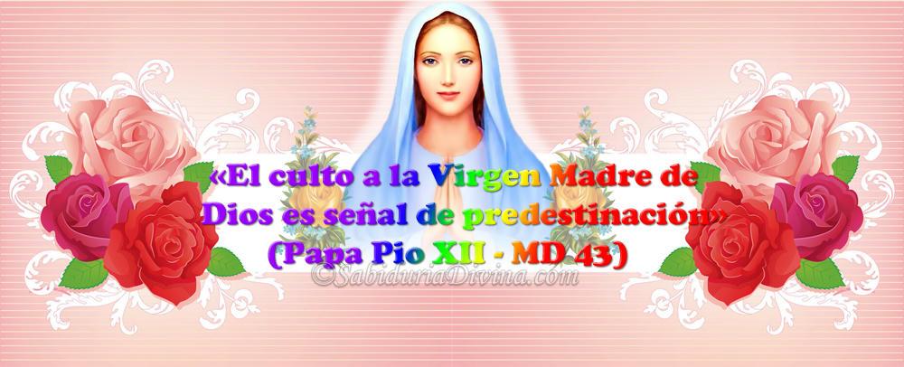 via crucis virgen maria