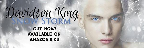 Davidson King - Snow Storm Banner