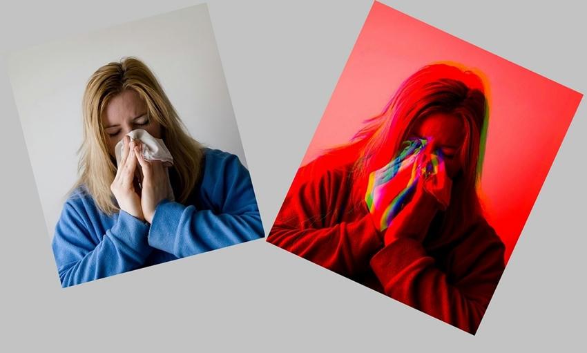 N-hidroxicitidina (NHC) el medicamento antiviral contra la gripe que se probará en humanos