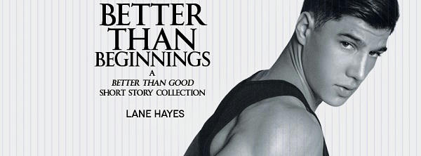 Lane Hayes - Better Than Beginnings Banner s