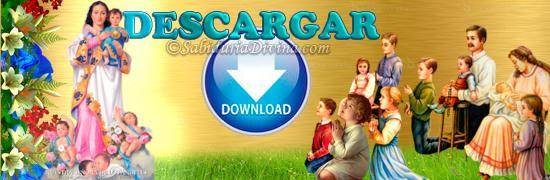 imagen descargar. Download icon