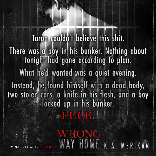 K.A. Merikan - Wrong Way Home Teaser-Square-3