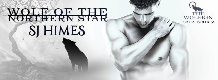 S.J. Himes - Wolf of the Northern Star Banner
