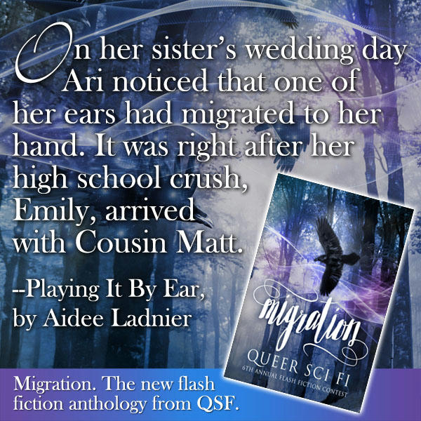 Migration QSF Flash Fiction Anthology MEME 4