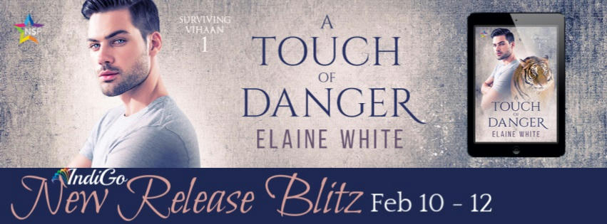 Elaine White - A Touch of Danger RB Banner