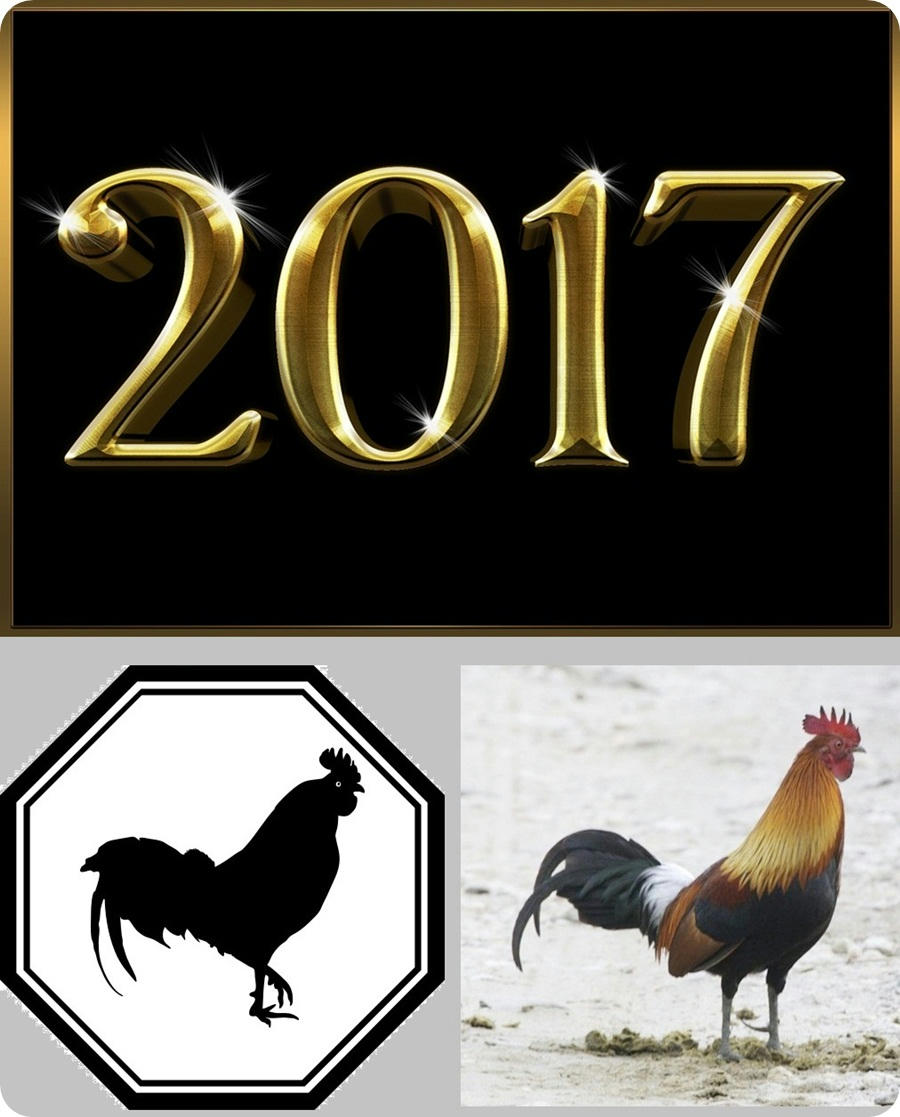 Lo que nos traerá el 2017, el año del Gallo de Fuego chino